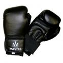 Boxovací rukavice MASTER TG10